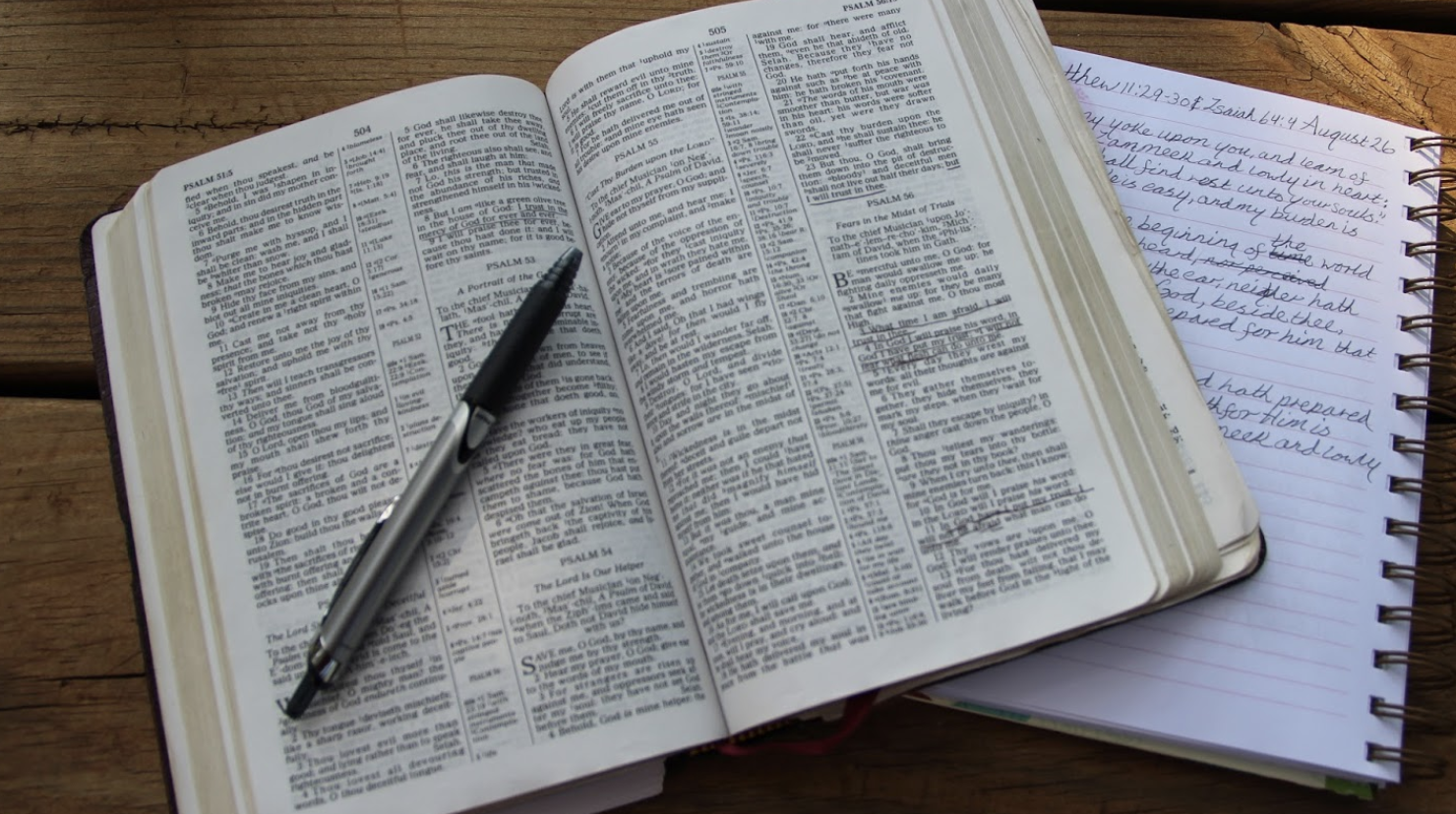 Problem Solving Bible Study and Apologetics