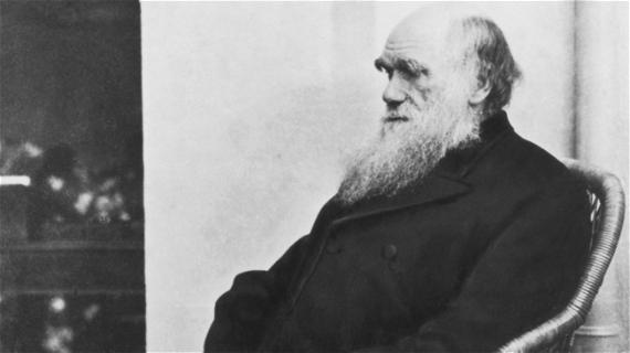 It's Darwin's Turn to Get Canceled