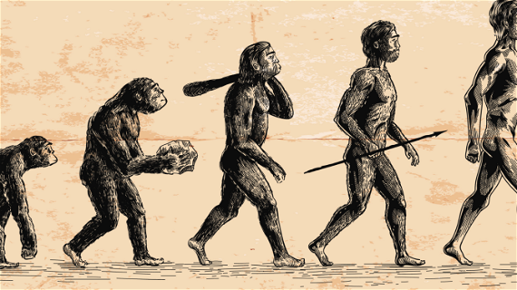 You're a White Supremacist If You Don't Believe in Evolution